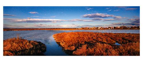 Les étangs de Maugio, la réserve du grec. Carte postale panoramique 10x23 cm - Photographe: Marianne Raous