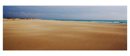 La plage de l'Espiguette - Carte postale panoramique 10x23 cm - Photographe: Marianne Raous