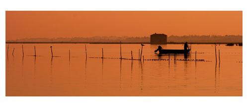 Pécheur d'anguille sur l'étang de l'Or. Au loin, la cabane de l'Avranche. Carte postale panoramique 10x23 cm - Photographe: Marianne Raous