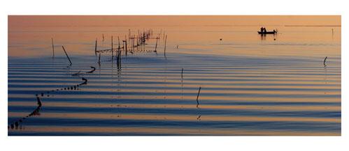 Pécheur d'anguille sur l'étang de l'Or. Carte postale panoramique 10x23 cm - Photographe: Marianne Raous