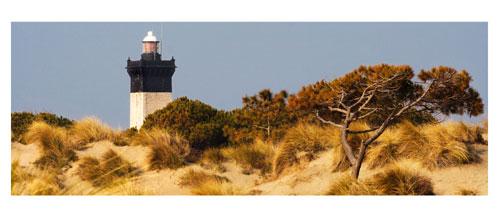 Le phare de l'Espiguette - Carte postale panoramique 10x23 cm - photographe: Marianne Raous