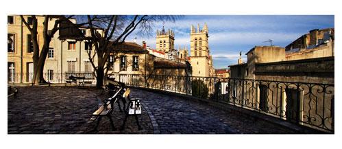 Montpellier - Place de la Canourgue - Carte Postale panoramique 10x23. Photographe Marianne Raous