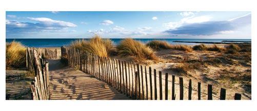 Plage Carnon- La Grande Motte - Chemin à travers les dunes du Grand Travers - Carte postale panoramique 10x23 cm - Photographe: Marianne Raous